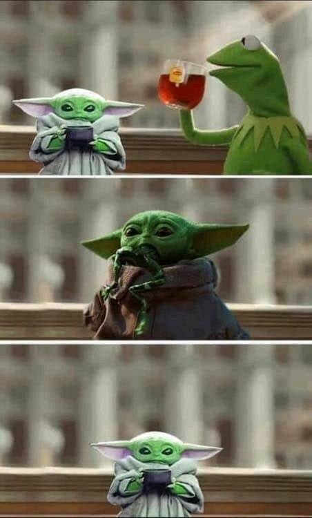 Pin By Cheryl Shock On Baby Yoda In 2020 Animals Birds Yoda