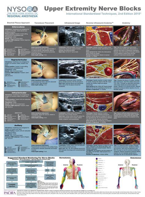 NYSORA - The New York School of Regional Anesthesia - NYSORA Educational Posters 2 Edition 2015