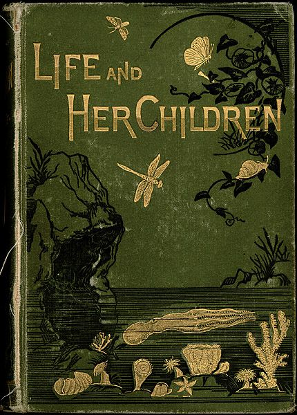 Arabella B. Buckley, Life and Her Children: Glimpses of Animal Life from the Amoeba to the Insects. New York: D. Appleton and Company, Illustrations by Dr. Book Cover Art, Book Cover Design, Book Design, Book Art, Victorian Books, Antique Books, Vintage Book Covers, Vintage Books, Vintage Library