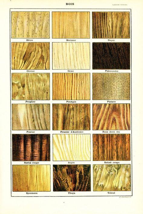 1948 Precious Wood Poster Wood Grain Types Vintage