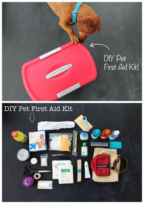 And this pet emergency kit, because they're basically your children, too. DIY Pet First Aid Kit: 19 DIY first aid kits that literally prepare you for anything Diy Pour Chien, Diy First Aid Kit, Hiking First Aid Kit, Diy Pet, Animal Projects, Service Dogs, Diy Stuffed Animals, Pet Health, Health Tips