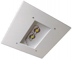 DOVER C LED Canopy Light
