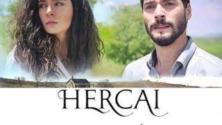 Hercai Orgullo Temporada 2 Capitulo 19 Subtitulo Español Series Y Novelas Turcas Gratis Series Y Novelas Temporada 2 Novelas