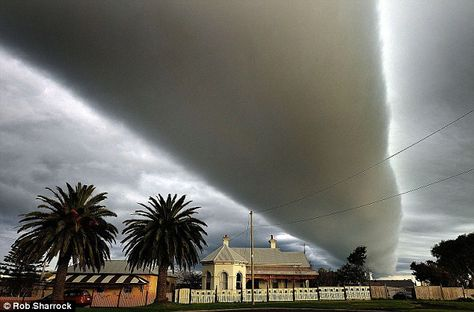 An incredible roll cloud dominates the skies above the photographer's house in Australia. Roll clouds ocurr ahead of storm fronts  The roll cloud is a subtype of arcus cloud - the funnel is horizontal and does not connect to the ground.The other subtype of arcus is a shelf cloud, which also often appear to precede storm fronts.