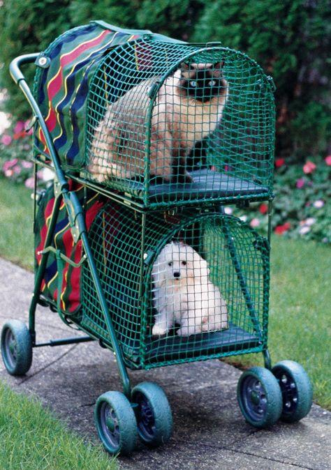 PetGear by Happy Pet Jumbo Cargo Guard