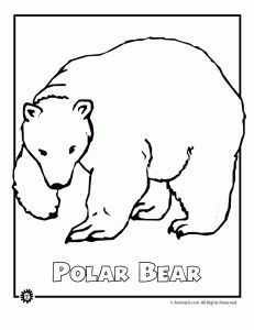 polar bear coloring pages. polar bear stencil  Google Search Top 10 Free Printable Polar Bear Coloring Pages Online