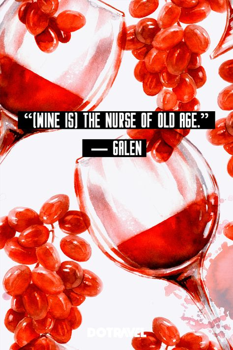 Wine quotes wine quotes funny wine quotes humor wine