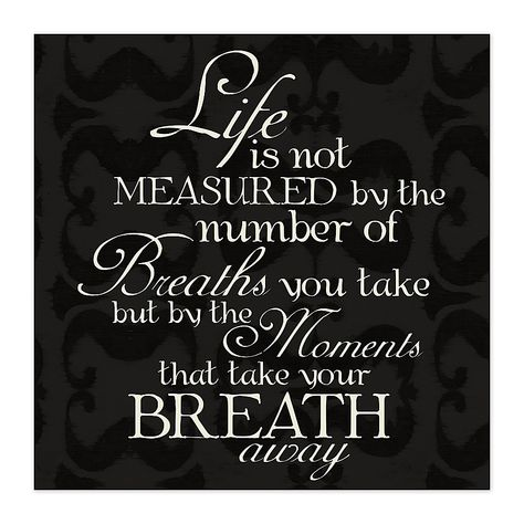 """Measured Life 16"""" X 16"""" Canvas Wall Art Multi - Featuring white script typography against a dramatic black damask background, the Measured Life Canvas Wall Art is a wonderful reminder whenever it might be needed. Makes a beautiful gift for someone special. - living room decor"""