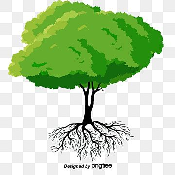 The Roots Of Trees Tree Trees Root Png Transparent Clipart Image And Psd File For Free Download In 2021 Tree Photoshop Cartoon Palm Tree Vector Trees