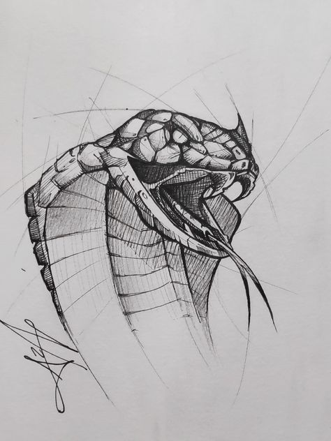 """I am back with a quick sketch of a cobra. I bought some new pen and I wanted to try them out. It was lot of fun to make those messy lines around the snake. """"The cobra's dramatic threat posture makes for a unique spectacle as it appears to sway to the tune of a snake charmer's flute. The cobra is deaf to the snake charmer's pipe, but follows the visual cue of the moving pipe and it can sense the ground vibrations from the snake charmer's tapping."""" – Wikipedia"""