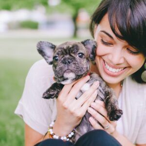 Extreme Heat How To Keep Your French Bulldog Safe French Bulldog Breed In 2020 French Bulldog Breed Pet Insurance Cost Pets