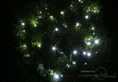 Everbright Solar Fairy Lights 100 White Leds Solar Fairy