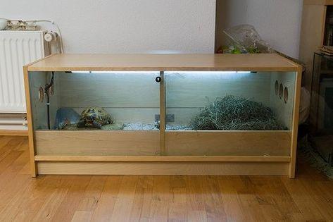Aquarium Terrarium Tortue En 2020 Terrarium Tortue Tortue Aquarium Pour Tortue