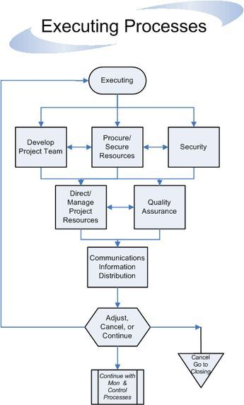 Executing Processes Flow Management Infographic Project Management Professional Project Management