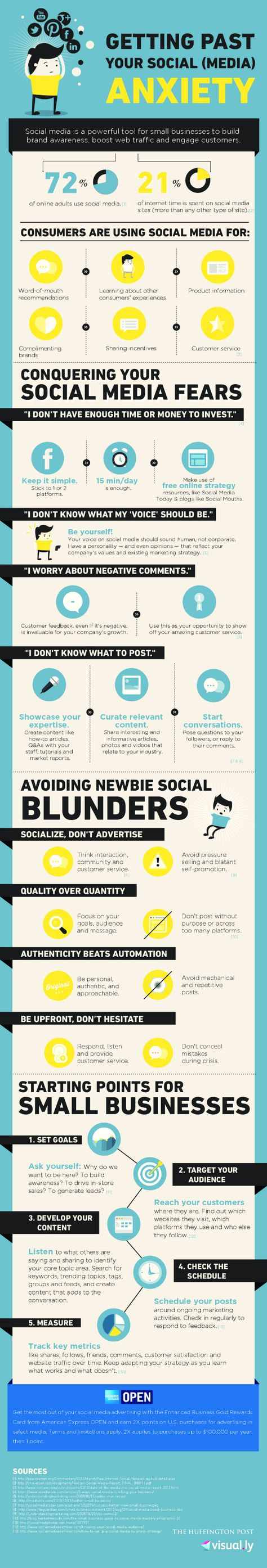 Social Media Fears, Tips, and Strategies for Small Businesses #socialmedia #infographics via - soshable