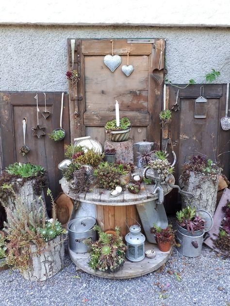 Ohne Irgendeinen Pflegeaufwand Gedeihen Die Vielen Hauswurzen Aus Dem Letzten Jahr Hervorragen Vintage Gartendekoration Garten Gestalten Gartengestaltung Ideen