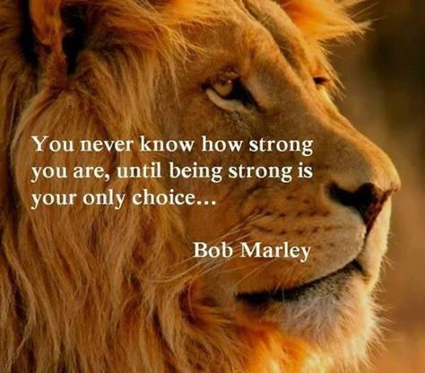 You never know how strong you are until being strong is your only choice - Bob Marley