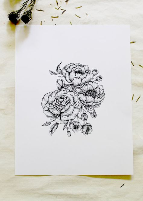 """Peonies + Roses Botanical 5"""" x 7"""" Floral Hand Drawn Pen and Ink Illustration"""