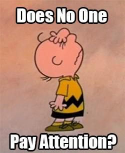 17694044a6bba27e4e38dbabd5062d87 104 best the peanuts images on pinterest charlie brown peanuts