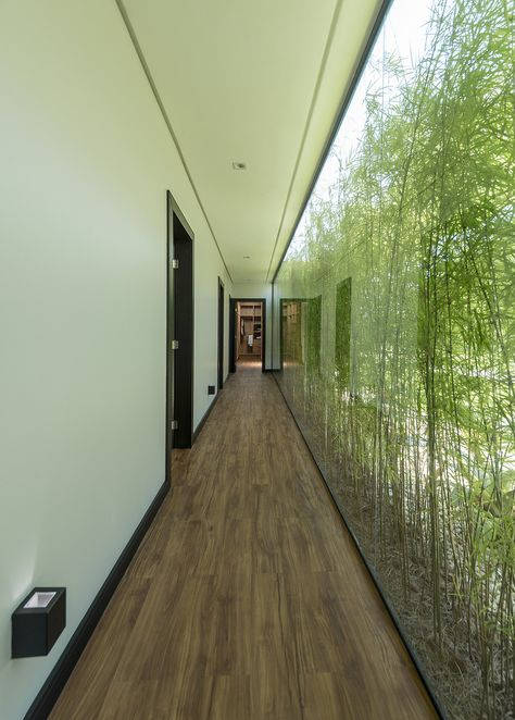 Image 6 of 37 from gallery of JP Residence / Sarau Arquitetura. Photograph by Lio Simas Interior Garden, Home Interior Design, Interior Architecture, Contemporary Architecture, Design Exterior, Interior And Exterior, Future House, My House, Corridor Design