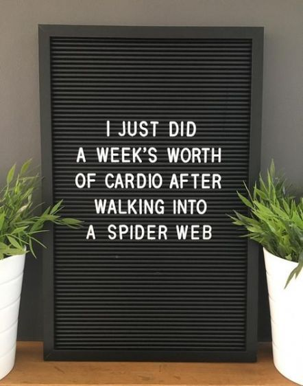 I did my cardio today. Sister Quotes Funny, Funny Quotes, Funny Humor, Funny Sister, Brother Quotes, Sister Humor, Nephew Quotes, Funny Shit, Word Board
