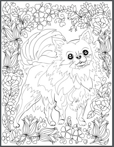Best Coloring Books for Dog Lovers | Adult coloring, Coloring books ...