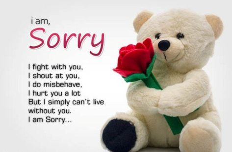 Here, you will found very Effective And Touching I am Sorry Shayari, Quotes, SMS & Sayings and WhatsApp Status for you all. Click to read and share.