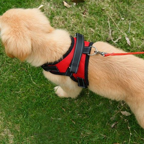 Soft Adjustable Dog Harness With Handle Outdoor Durable Dog
