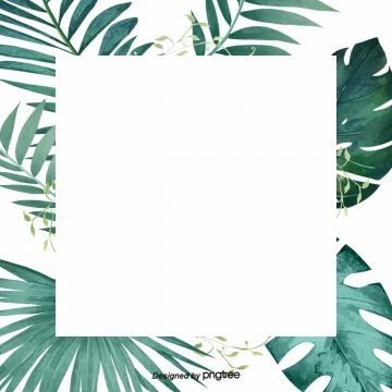 Elegant Green Leaf Palm Border Design Material Green Leaf Palm Leaf Png Transparent Clipart Image And Psd File For Free Download Abstraktnye Fony Tropicheskie Listya Fotooboi