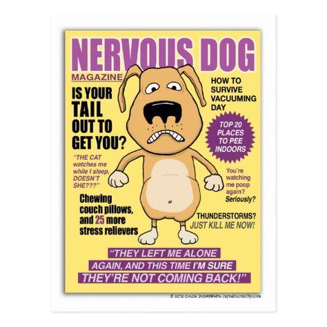 Funny Nervous Dog Magazine postcard