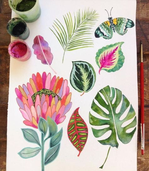 Playing around with some tropical leaves.