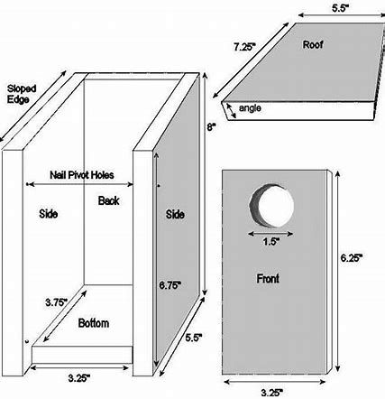 Image Result For Blue Jay Birdhouse Dimensions Bird House Plans Bluebird House Bluebird House Plans