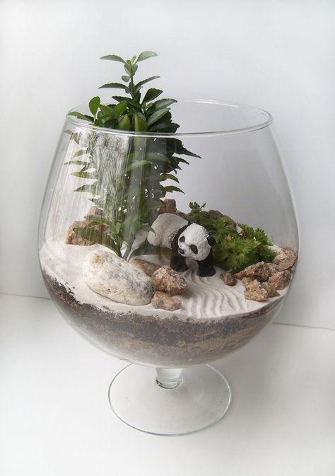 Panda Miniature Garden Open Terrarium Sukkulententerrarium Minibiotop Gartenterrarium