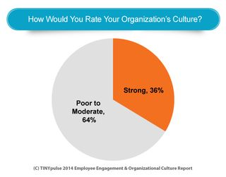 Company Culture Metrics What You Need To Be Tracking And Why Employee Engagement Company Culture Culture