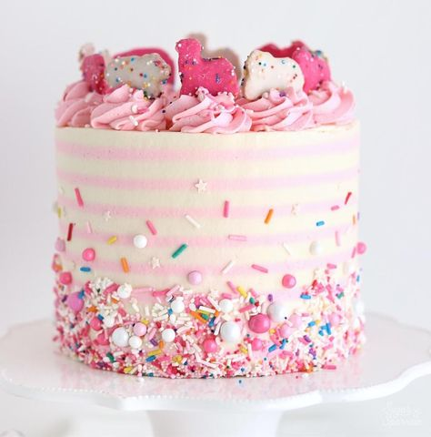 pink and white striped circus cake with sprinkles - Pink Cake Decoration Ideen Pink Birthday Cakes, Pink Cakes, Carnival Birthday, Birthday Parties, Striped Cake, Drip Cakes, Buttercream Cake, Pretty Cakes, Amazing Cakes