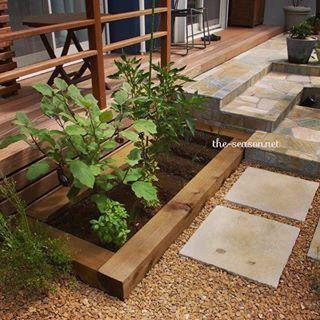 お庭の楽しみといえば やっぱり家庭菜園 育てる場所が決まってい