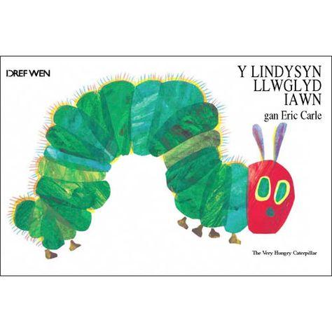Image result for lindysyn llwglyd iawn