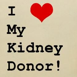 Find one-of-a-kind Kidney Donor Blankets at CafePress.