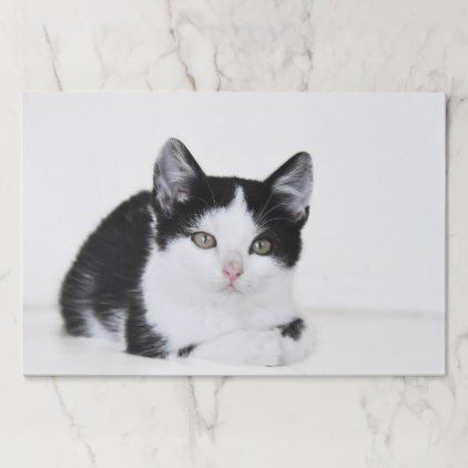 Black And White Kitten Paper Placemat Zazzle Com Animals Black And White Black And White Kittens White Kittens