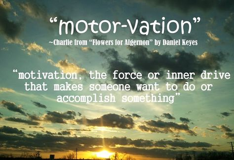 Motor Vation Flowers For Algernon Charlie Charly Motivation