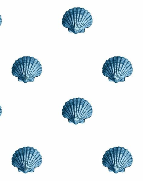 'Seashell' Wallpaper by Wallshoppe - Blue - Wallpaper Roll - Sample