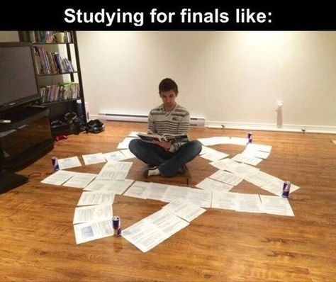 A collection of memes related to that dreaded time of year, finals week. Finals Week Humor, Exams Memes, Stupid Funny Memes, Funny Relatable Memes, Hilarious, College Memes, School Memes, College Life, Have A Laugh