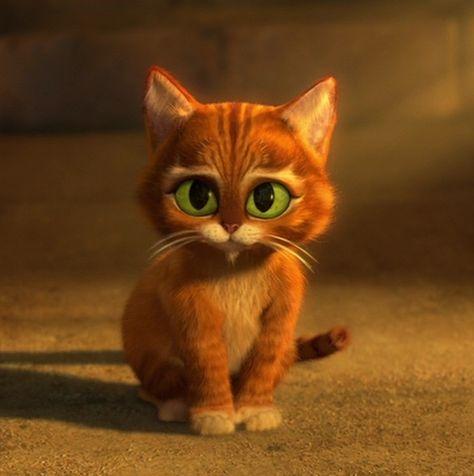 Puss in Boots as a kitten :)