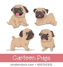 Set Of The Funny Cartoon Pugs Puppies Vector Illustration Pugs