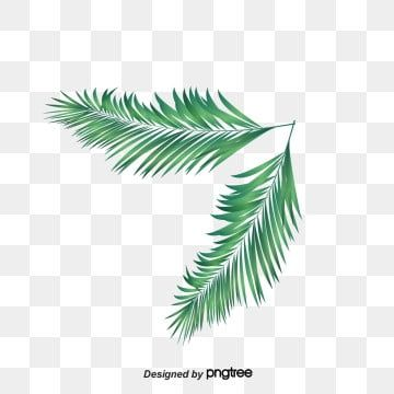 أوراق الشجر نبات اوراق اشجار ميتو Png وملف Psd للتحميل مجانا Modern Art Abstract Plant Leaves Abstract