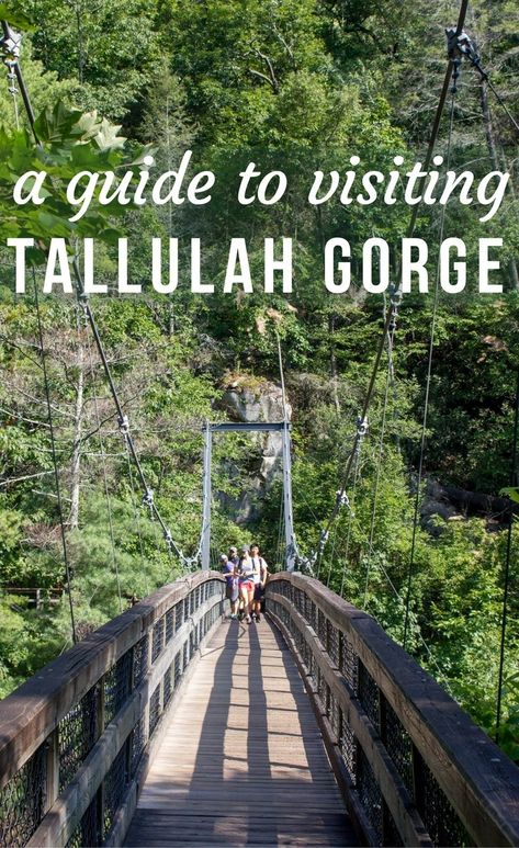 A Guide to Visiting Tallulah Gorge State Park in North Georgia - Maple & Maps Tallulah Falls Georgia, Tallulah Gorge, Hiking In Georgia, Georgia State Parks, Weekend Trips, Day Trips, Weekend Getaways, Places To Travel, Places To See