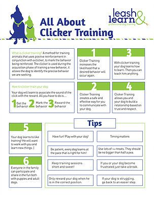 Private Dog Trainer Manhattan Clicker Training Positive