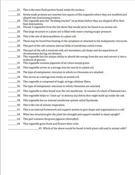 Cell Organelles Matching Worksheet Cell Organelles Organelles Matching Worksheets
