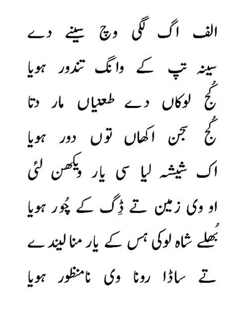 Heer Waris Shah Book In Punjabi