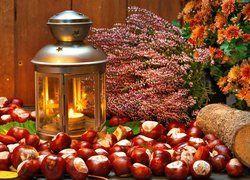Jesienna Kompozycja Kasztany Lampion Swieca Wrzos Chryzantemy Photography Wallpaper Table Decorations Wallpaper